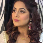 Shehnaz Kaur Gill Age, BF, Husband, Family, Career, Songs, TV Shows, Movies, Net Worth, Biography, and More