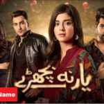 HUM TV Drama Yaar Na Bichray Cast Real Names, Story, Timing, and Much More